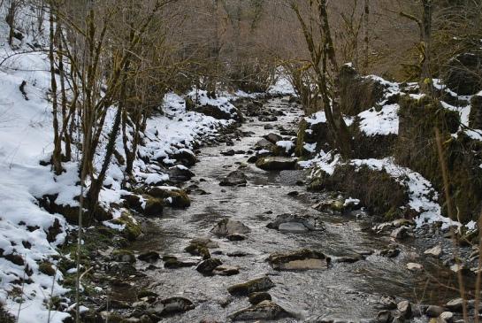 Ambiance d'hiver depuis le pont sur le ruisseau.
