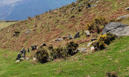 On n'est plus bien loin de la frontière, on peut déjà commencer à chercher s'il existe des bornes sans numéros, plus anciennes. Le chemin longe un ancien enclos de pierres levées.