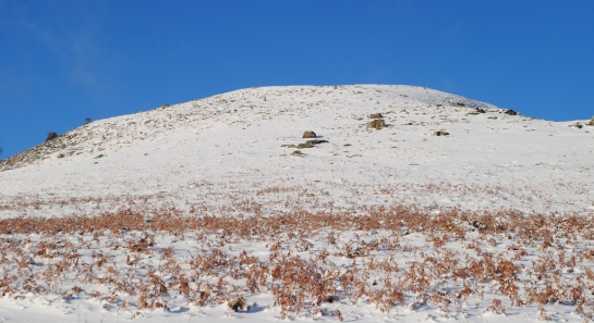 Au moins pour la borne 107, la recherche ne sera pas bien difficile, car en levant la tête vers Antchola nous l'apercevons d'ici dans la pente, se détachant sur la neige. Mais pas question de monter jusque là aujourd'hui dans la neige, ce sera pour une prochaine visite !